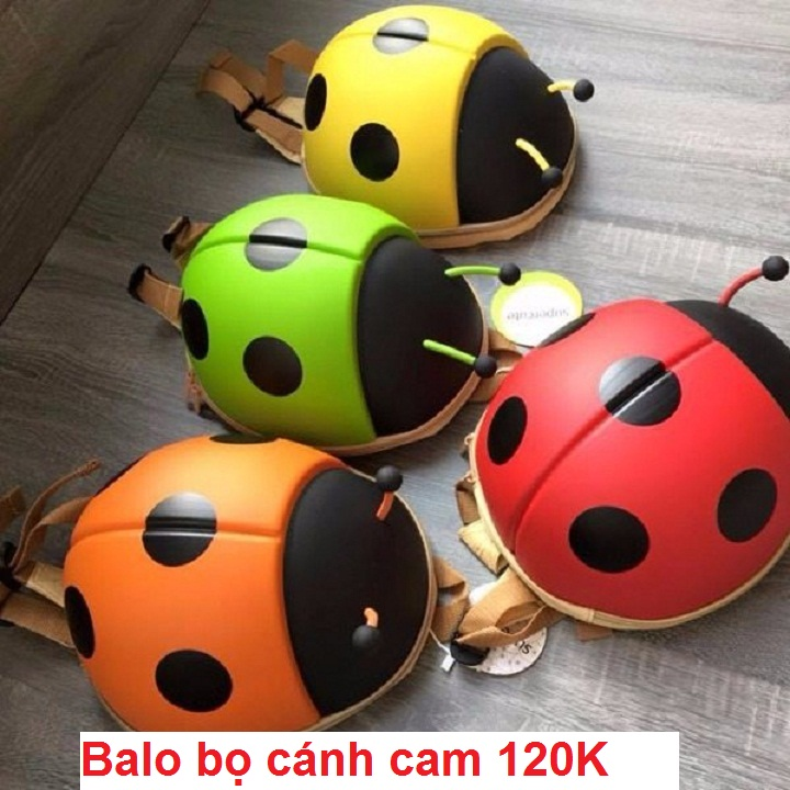 balo-bo-canh-cam-1.jpg