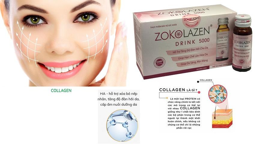 Nguồn gốc của collagen-2.jpg