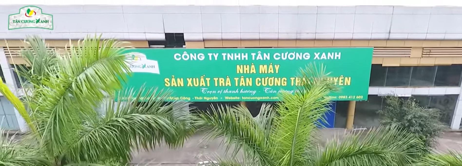 nha may tra Tan Cuong Xanh.jpg