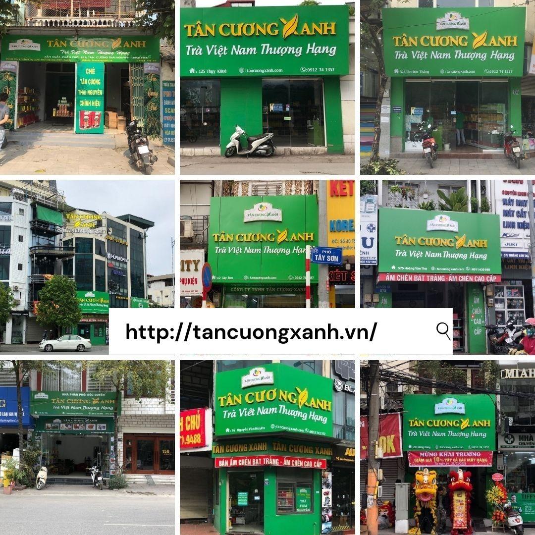 tra thai nguyen Tan Cuong Xanh huong vi dat troi 2.jpg