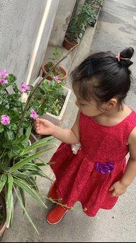 huong.pt2011