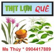 thuy_nghean