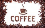 caffe.thuy@gmail.com