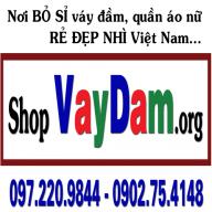 VayDam.org