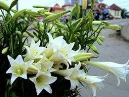 hoa.eprtech