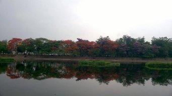 linhphuong_90