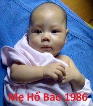MeHoBao1986